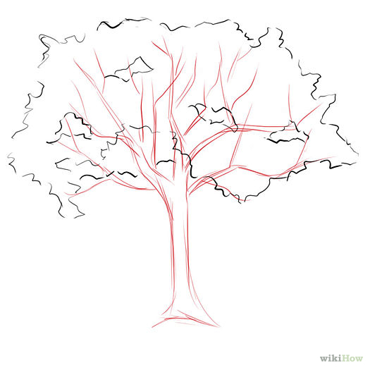 525x525 How To Draw Trees Step By Step