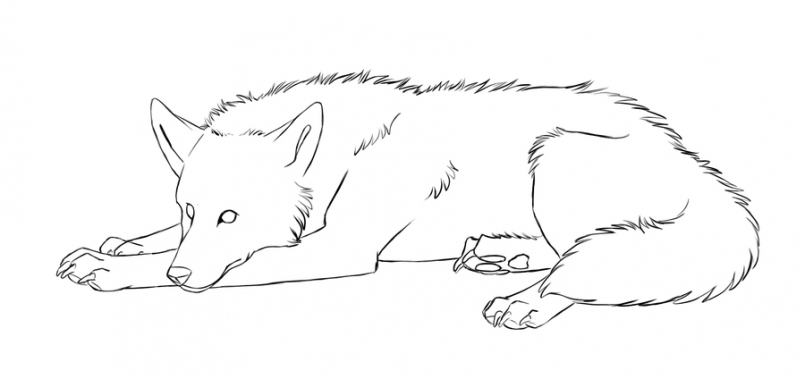 how to draw a realistic cat lying down