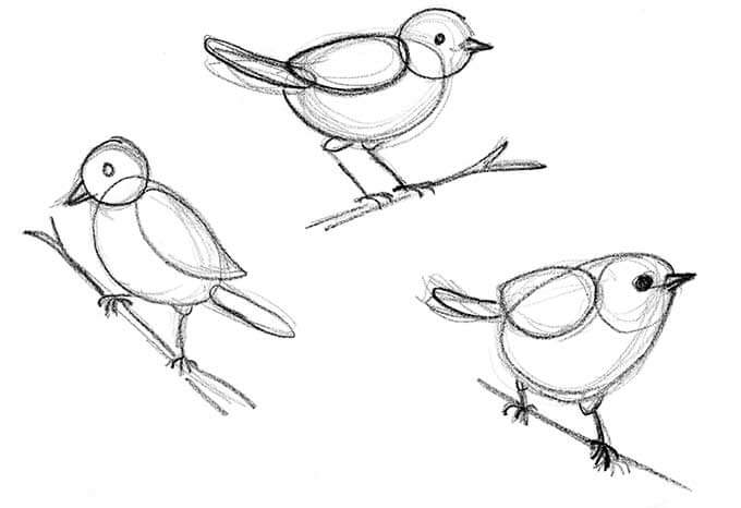 680x466 How To Draw A Bird Step By Step Easy With Pictures Bird, Doodles