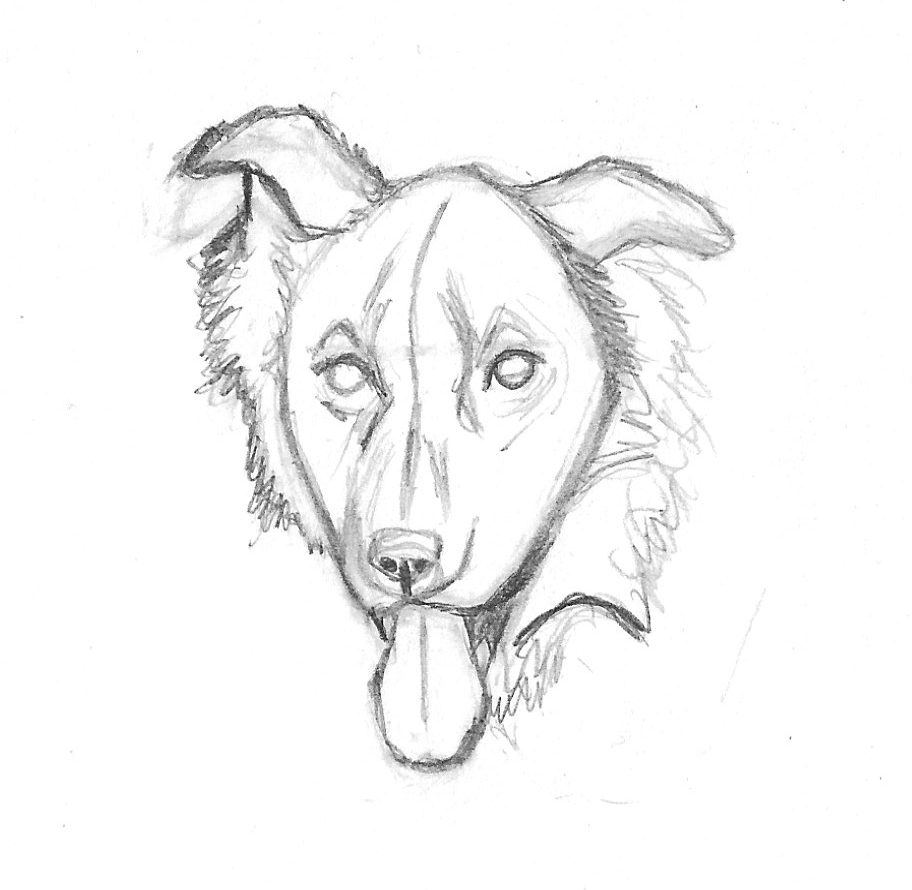 912x890 Wordless Wednesday Drawing Zipper American Dog Blog