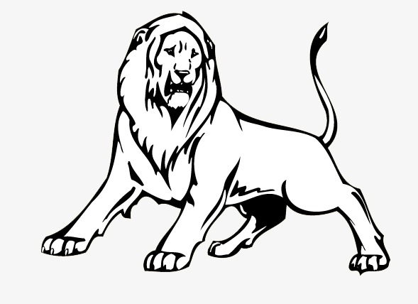 589x428 Stick Figure Lion, Stick Figure, Lion, Animal Png Image