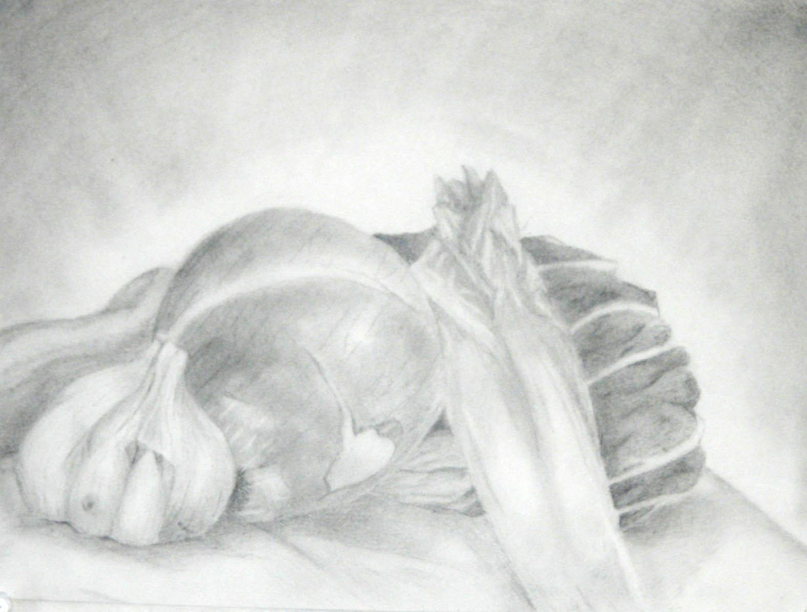 1576x1196 Drawings