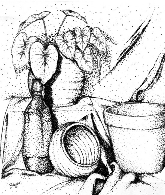549x650 Still Life Printable Coloring Pages Coloring Pages