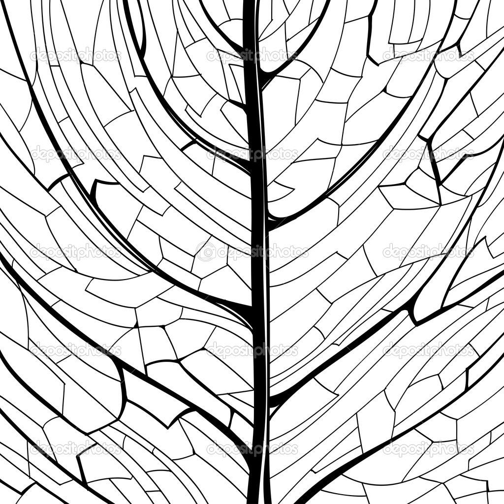 1024x1024 Leaf Pattern Line Drawing