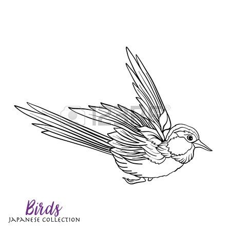 Stork Drawing