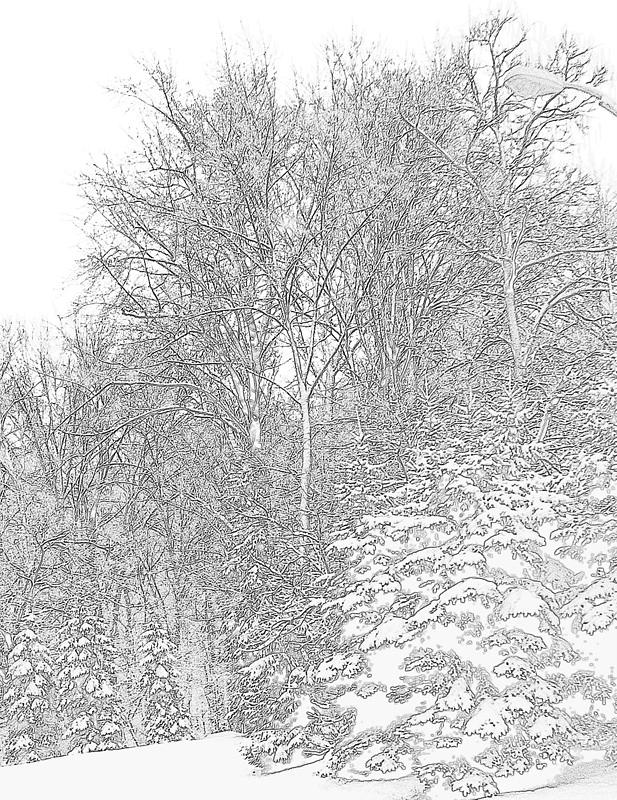 617x800 Pencil Drawing Of Snow Storm Photograph By William Rogers