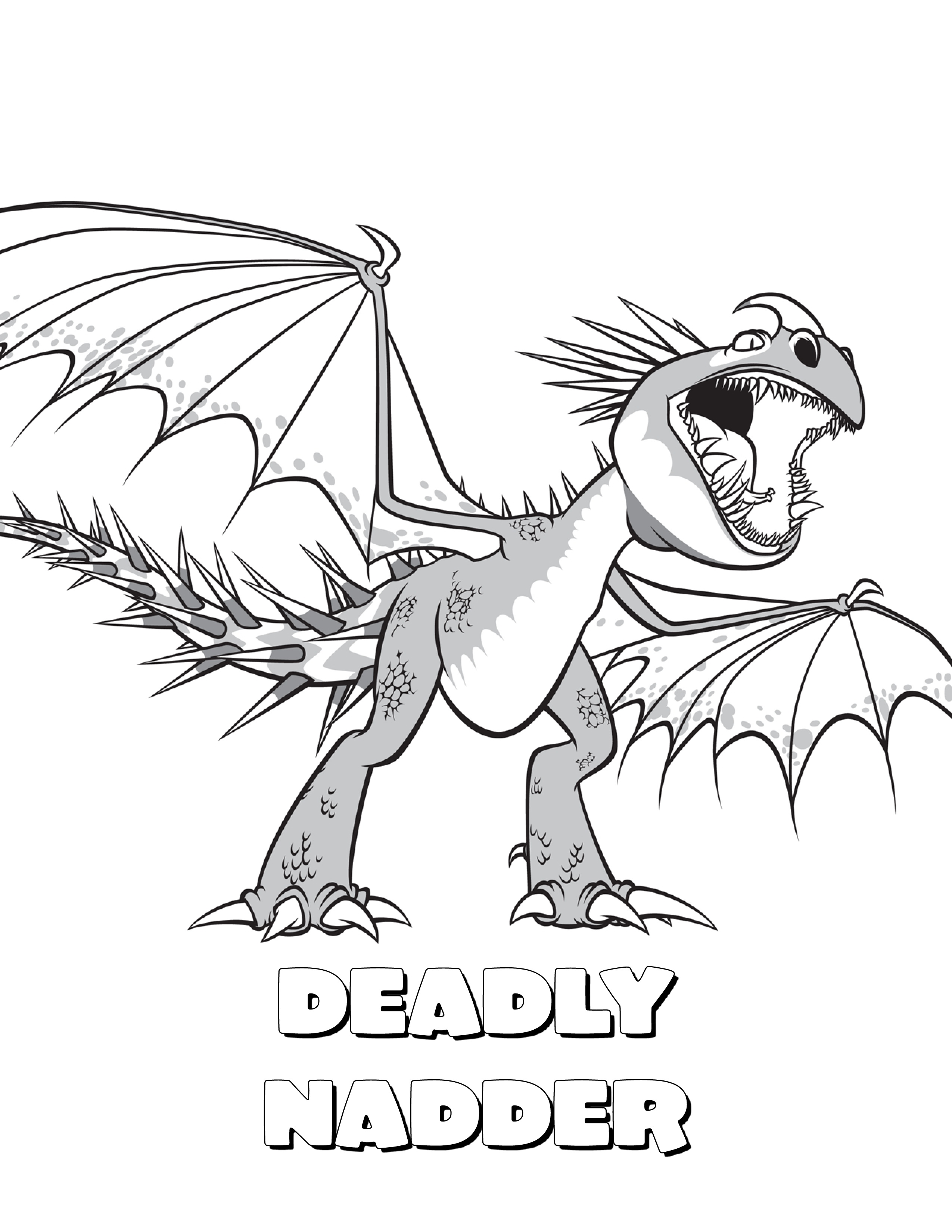 2550x3300 How To Train Your Dragon Coloring Pages Stormfly Deadly Nadder