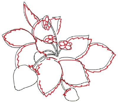 Strawberries Drawing