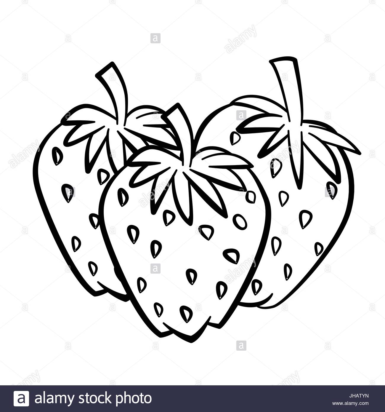 1300x1390 A Black And White Drawing Of A Strawberry Stock Photo 31414752