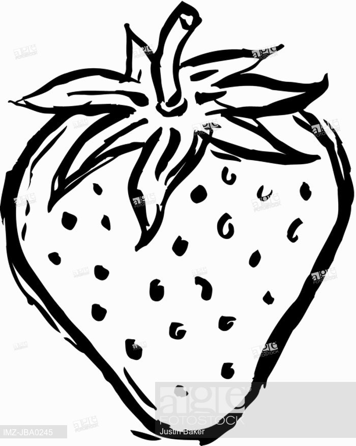 Strawberry Drawing at GetDrawings | Free download