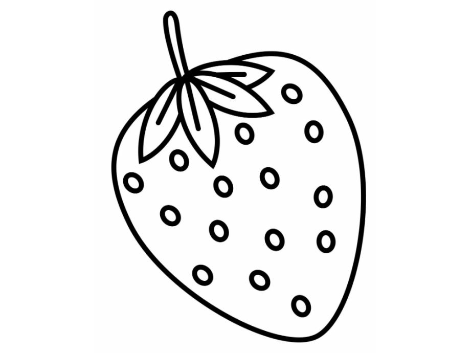strawberry drawing at getdrawings  free download