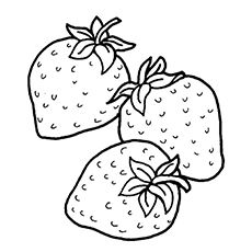 230x230 Strawberry Coloring Pages Printable For Fancy Draw Page