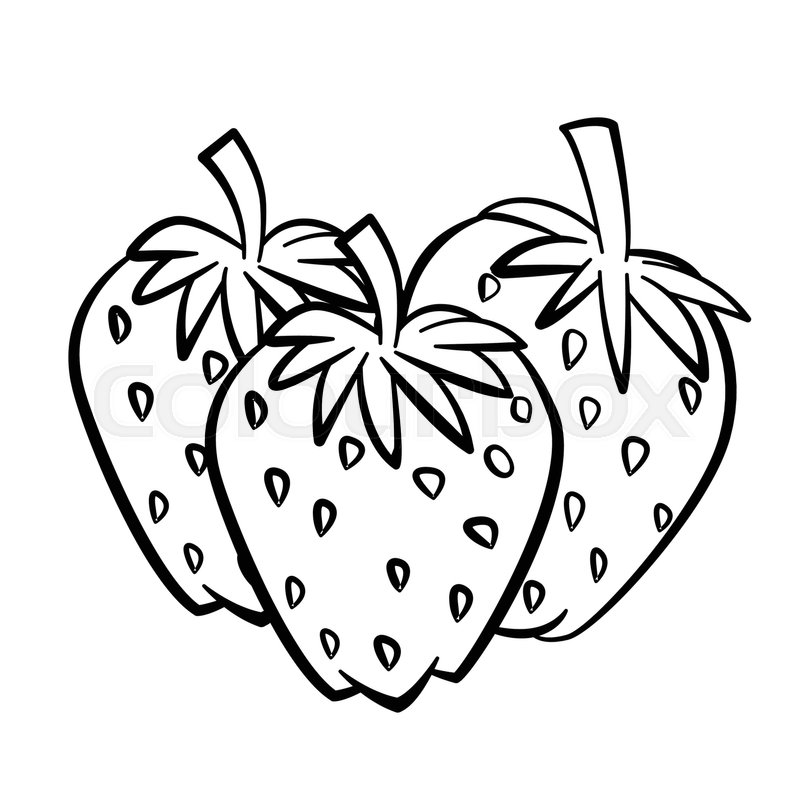 800x800 Hand Drawn Sketch Of Strawberry With Branch And Leaf Isolated