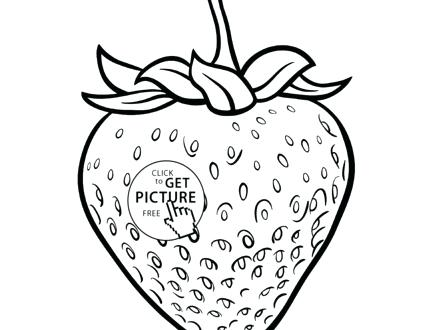 440x330 Strawberry Coloring Page Willy And The Bee Sitting On Strawberry