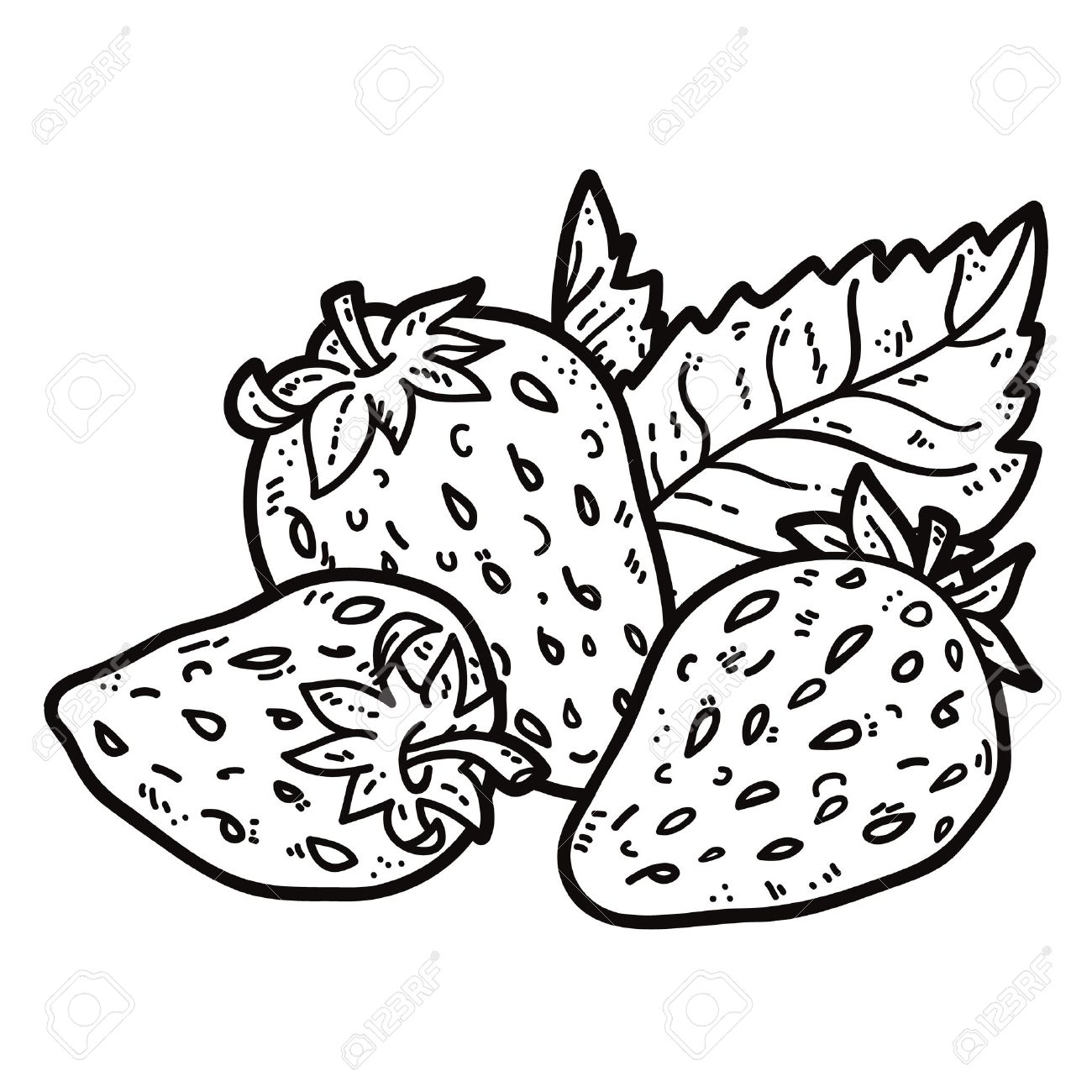 Strawberry Outline Drawing at GetDrawings.com | Free for ...