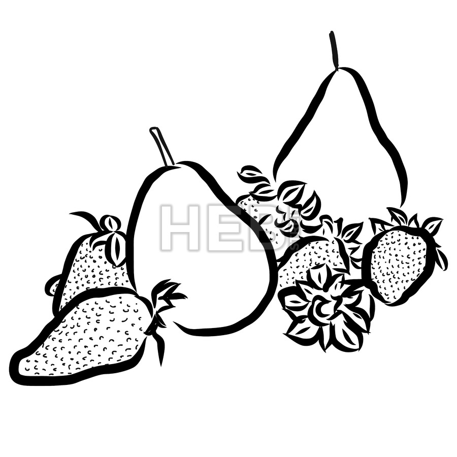 900x900 Pear And Strawberry Sketched Outline Vector Illustration Hebstreits