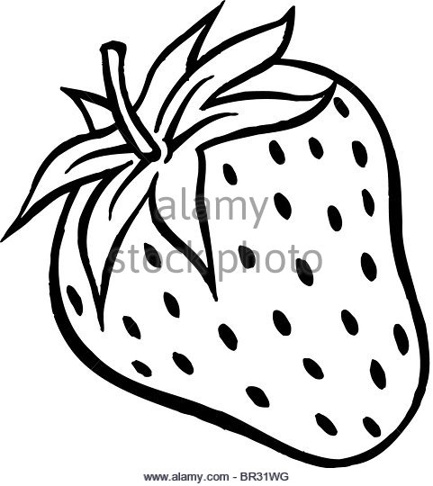 481x540 Strawberry Fresh Fruit Drawing Icon Black And White Stock Photos