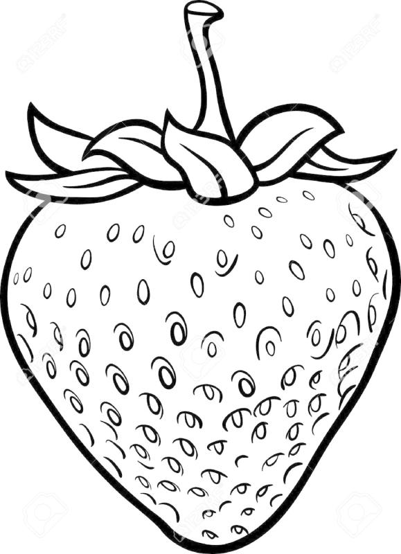 Strawberry Outline Drawing at GetDrawings | Free download