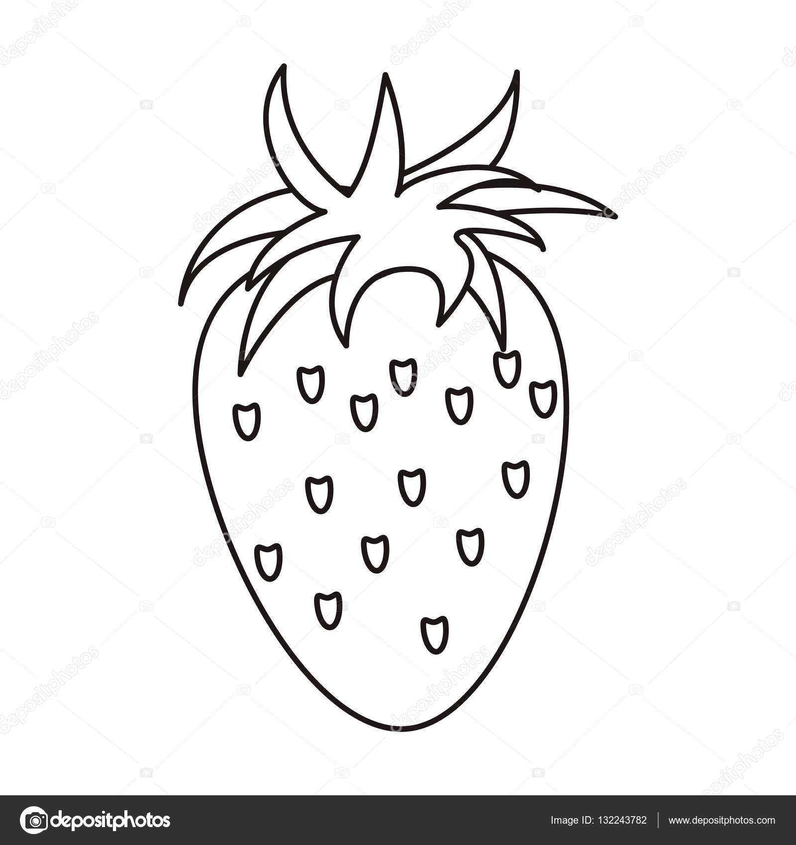 1600x1700 Strawberry Healthy Fruit Nature Outline Stock Vector Jemastock