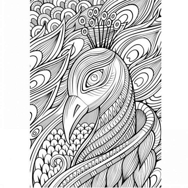 800x800 Secret Eden Coloring Book For Children Adult Antistress Art