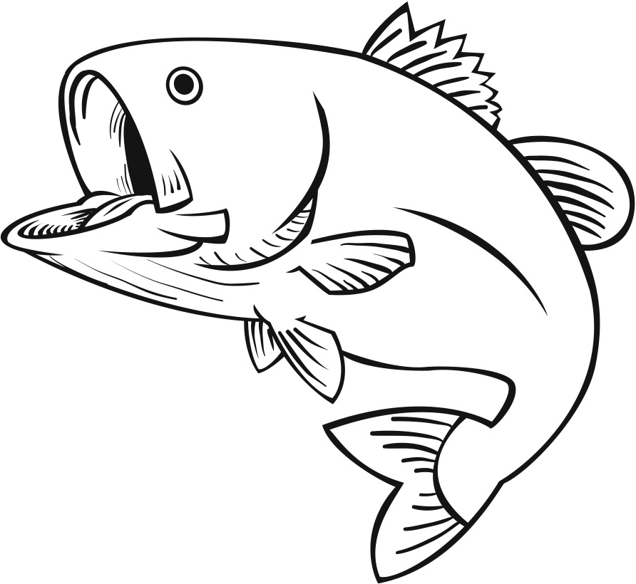 892x820 Stretch Drawn Fish Clipart