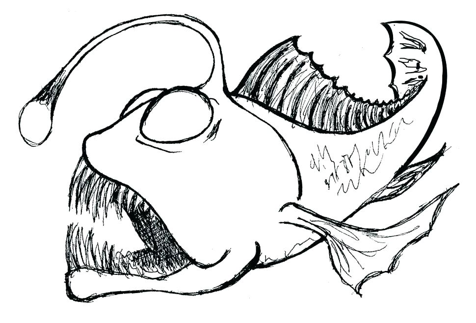 Striped Bass Drawing