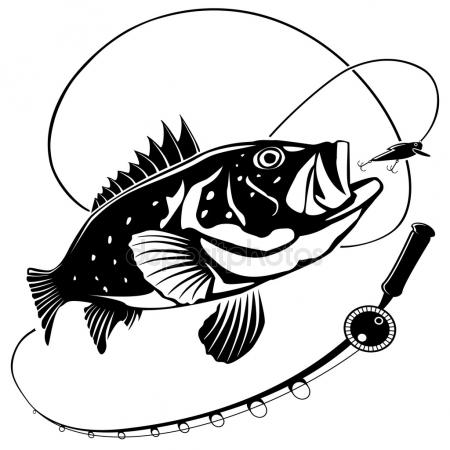 striped bass drawing at getdrawings com free for personal use rh getdrawings com Fish Skeleton Fish Skeleton