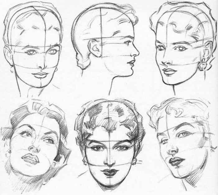 701x629 Plate Constructing The Female Head Ppl Facehead Tutorials