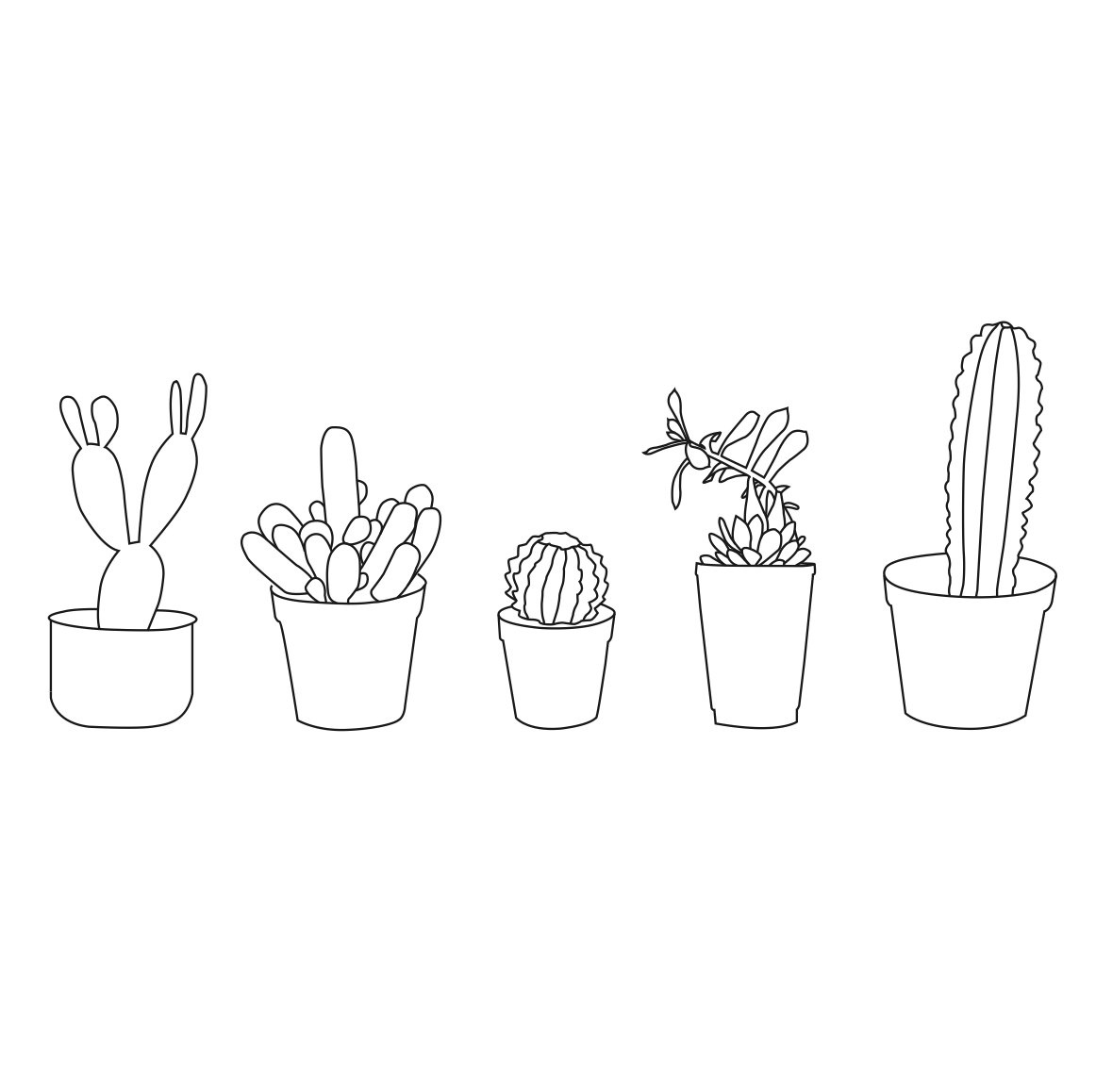 1162x1158 Potted Cacti Amp Succulents By Loloplant On Etsy