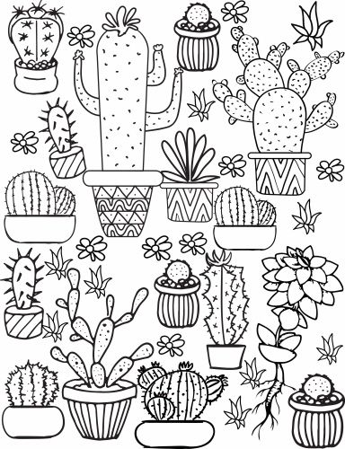 384x500 Cactus And Succulent Printable Adult Coloring Pages Adult