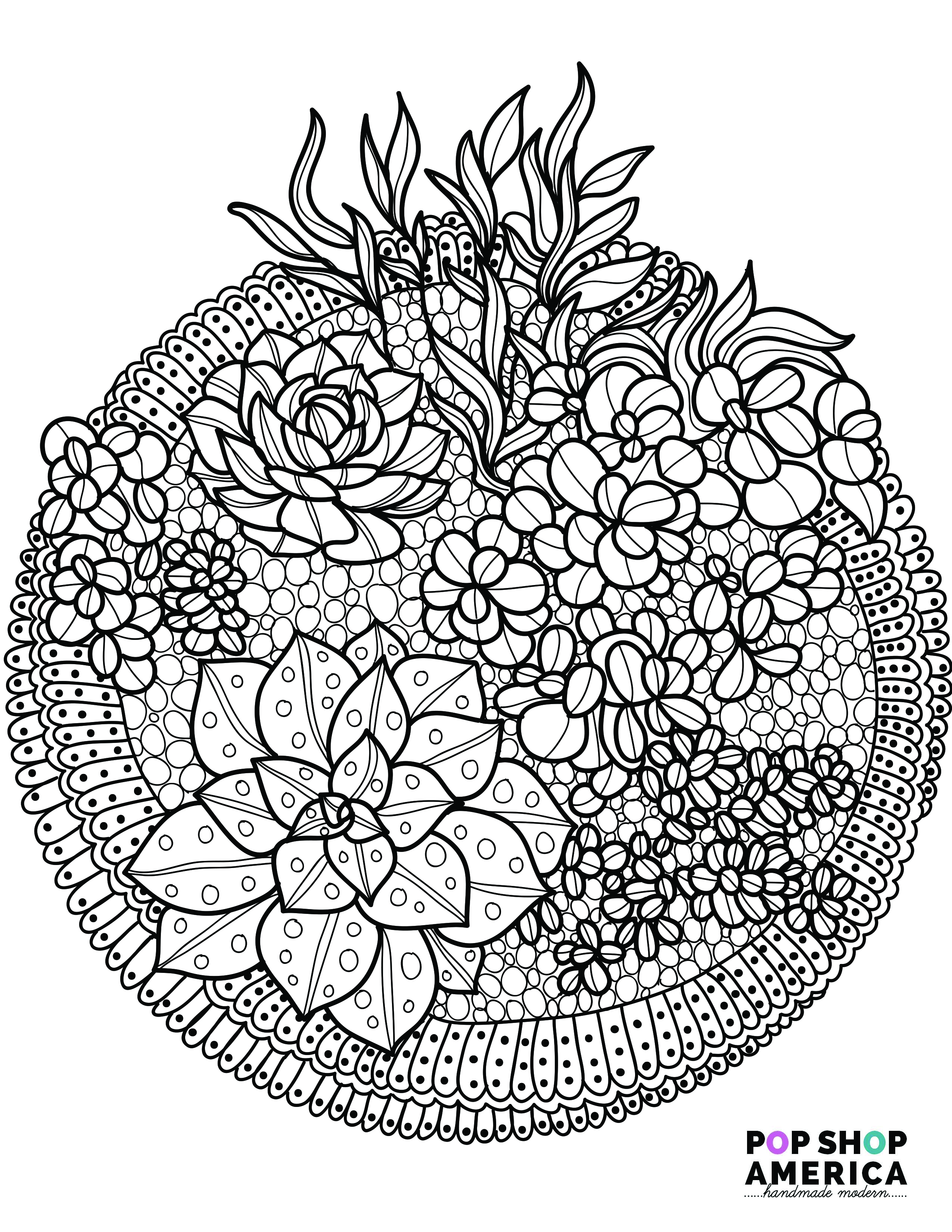 2550x3300 Free Adult Coloring Book Pages With Succulent Terrariums