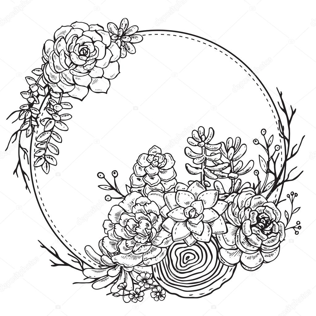 1024x1024 Hand Drawn Composition Of Succulent Plants. Stock Vector