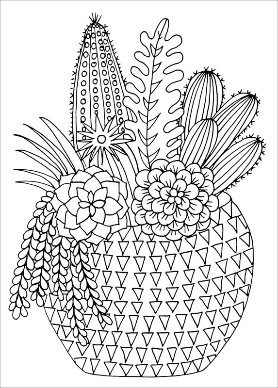 573x800 Succulents Artist's Coloring Book (Studio Series) (066707) Details