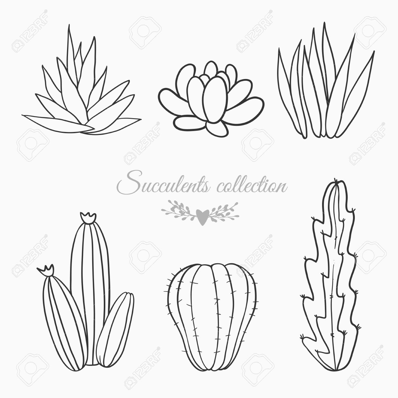 1300x1300 Black And White Sketches Of Cactuses, Succulents And Other Desert