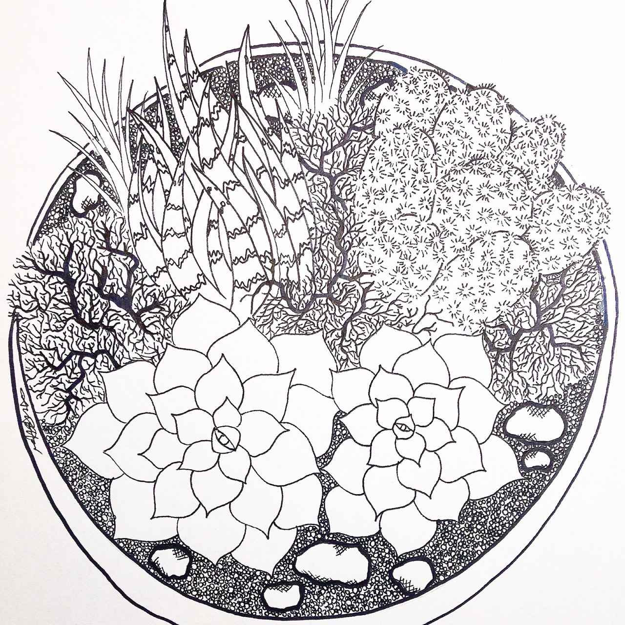 1280x1280 Tumblr Plant Drawing