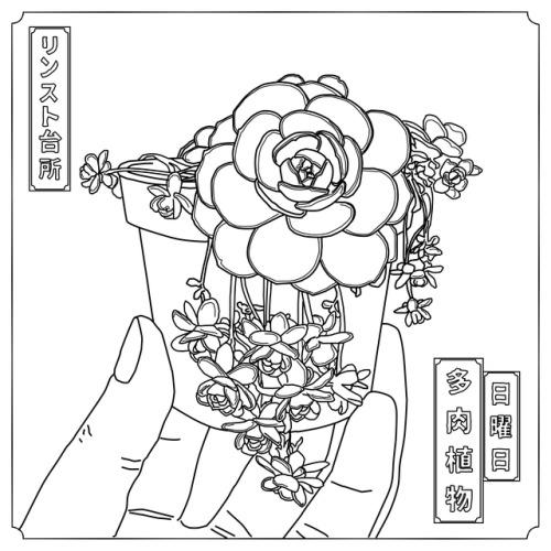 500x500 Succulent Line Art Tumblr