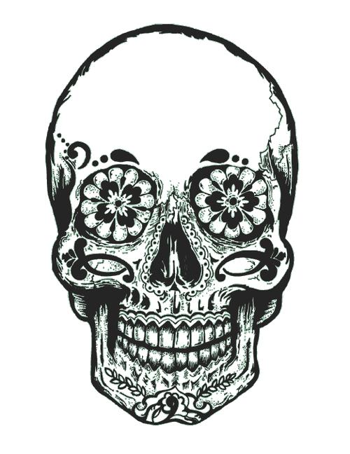 500x648 Gallery For Gt Tumblr Transparent Skull Sticker