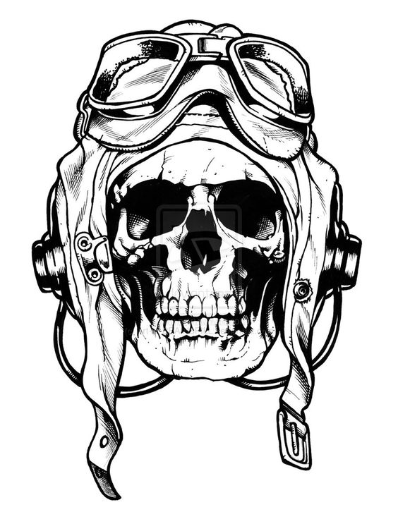 564x753 Don'T Normally Like Skulls But This Is Dope, Probably Would Look