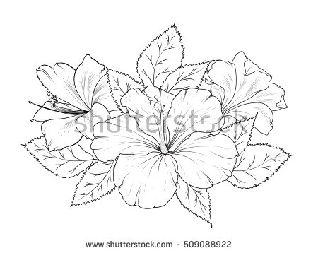 450x358 Hibiscus And Lily Flowers Bouquet Garland Composition. Isolated