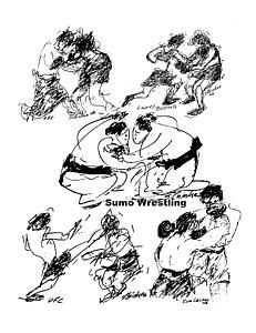 231x300 Sumo Drawings Fine Art America