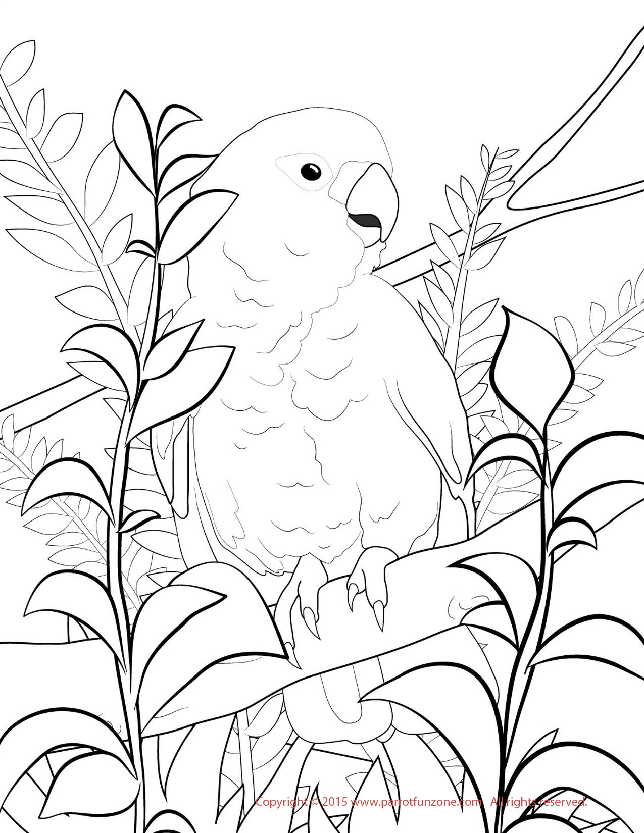 1275x1650 Coloring Pages