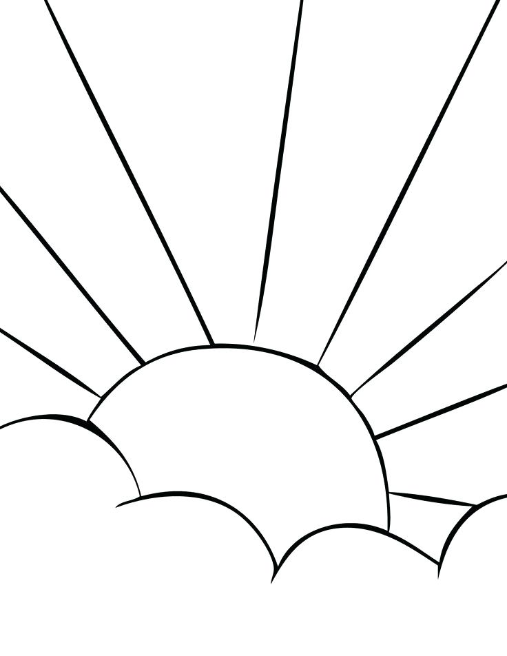 736x952 Sunflower Seeds Coloring Pages Sun 6 Kids Best Coloring Pages
