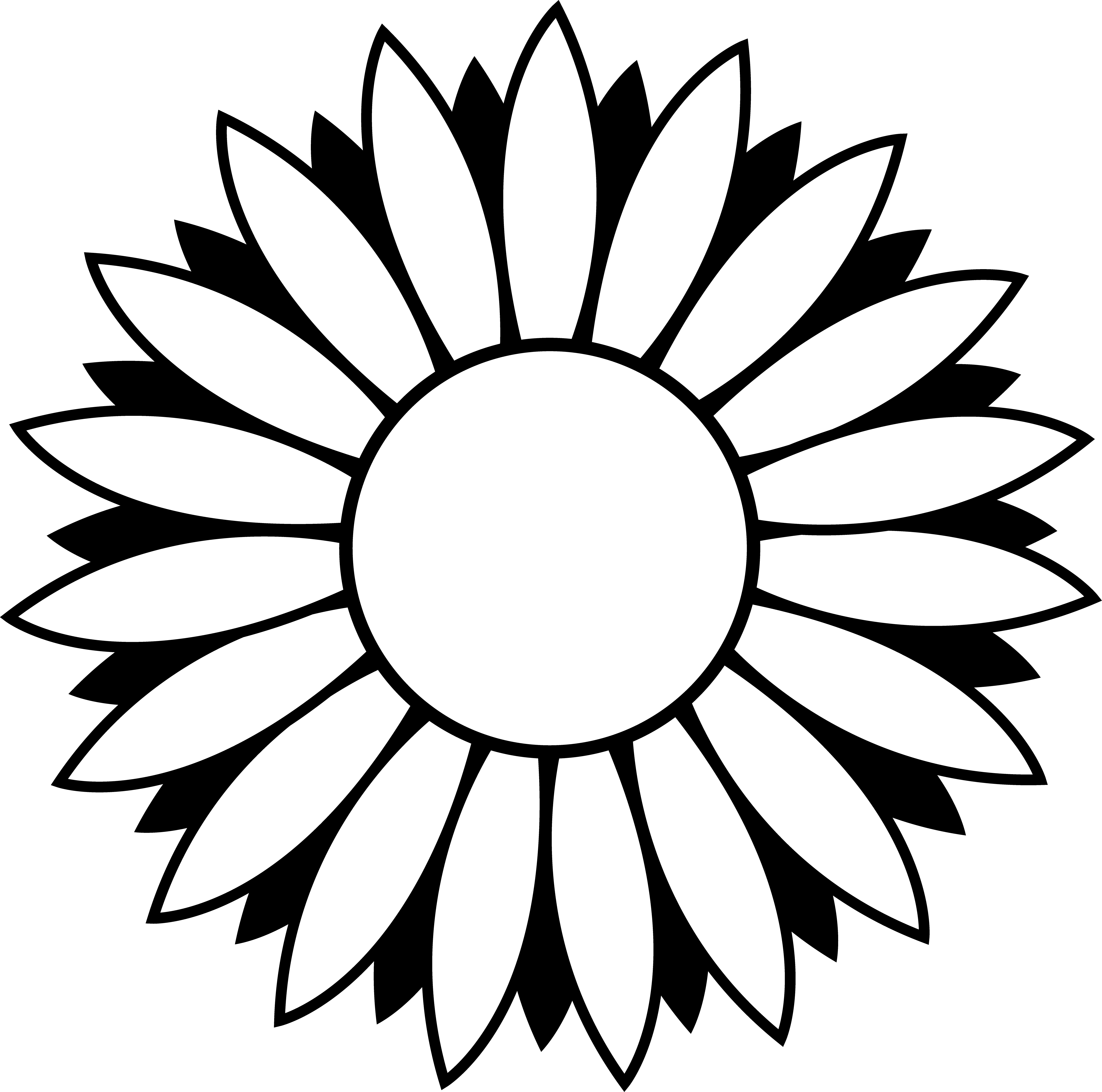 5137x5092 Black And White Colorable Sunflower