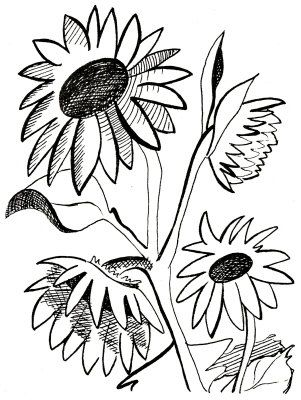301x400 Coolest Sunflower Clipart Black And White