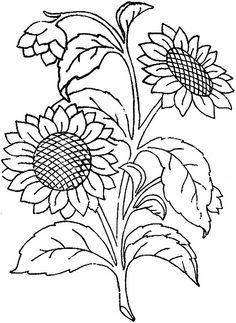 236x323 Drawn Leaf Sunflower