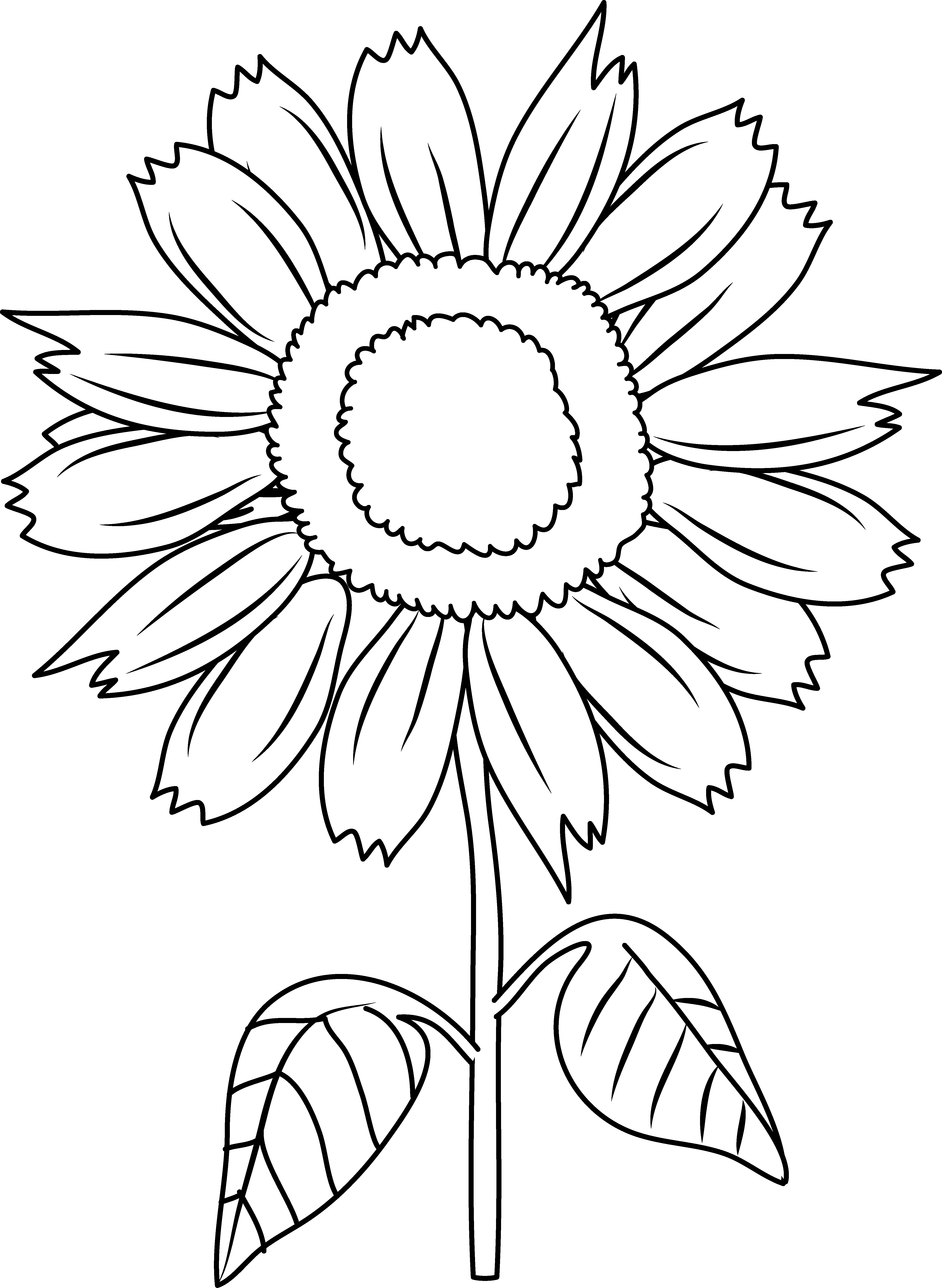 4668x6382 Pretty Sunflower Coloring Page