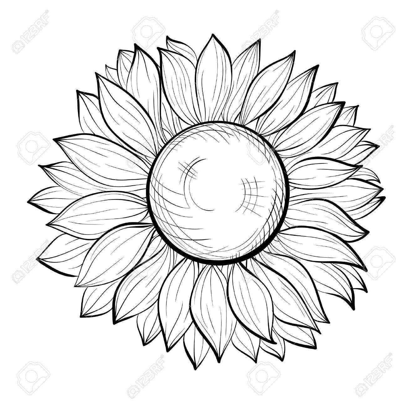 1300x1300 Black And White Sunflower Drawing Sunflower Outline Drawing