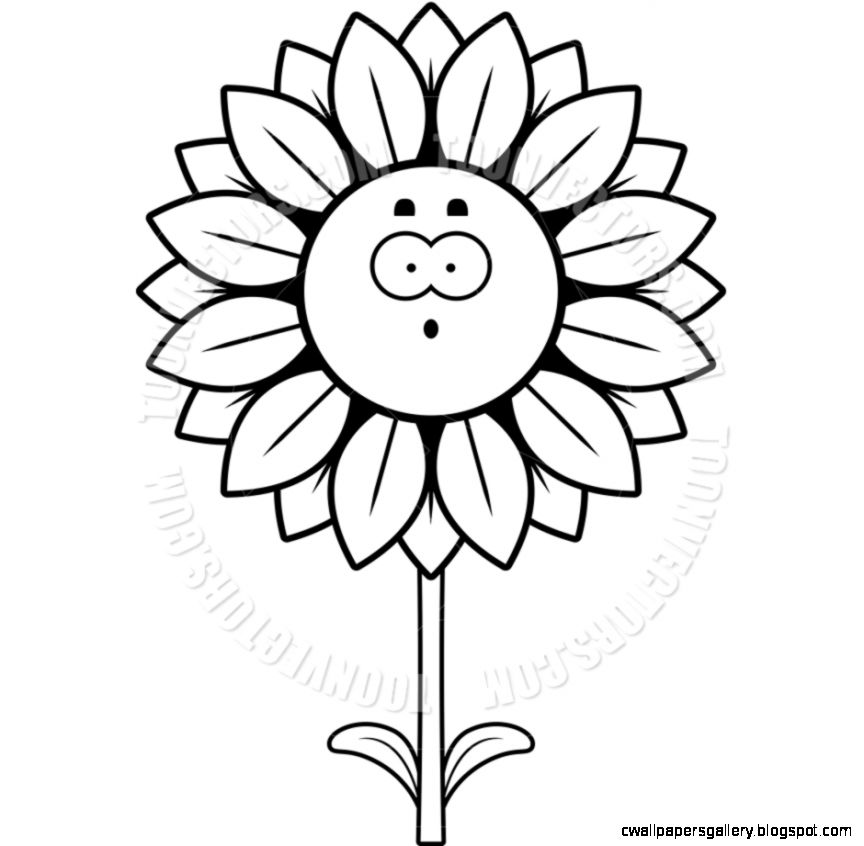 864x846 Sunflower Black And White Clip Art Wallpapers Gallery
