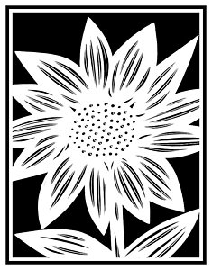 235x300 Black And White Sunflower Drawings
