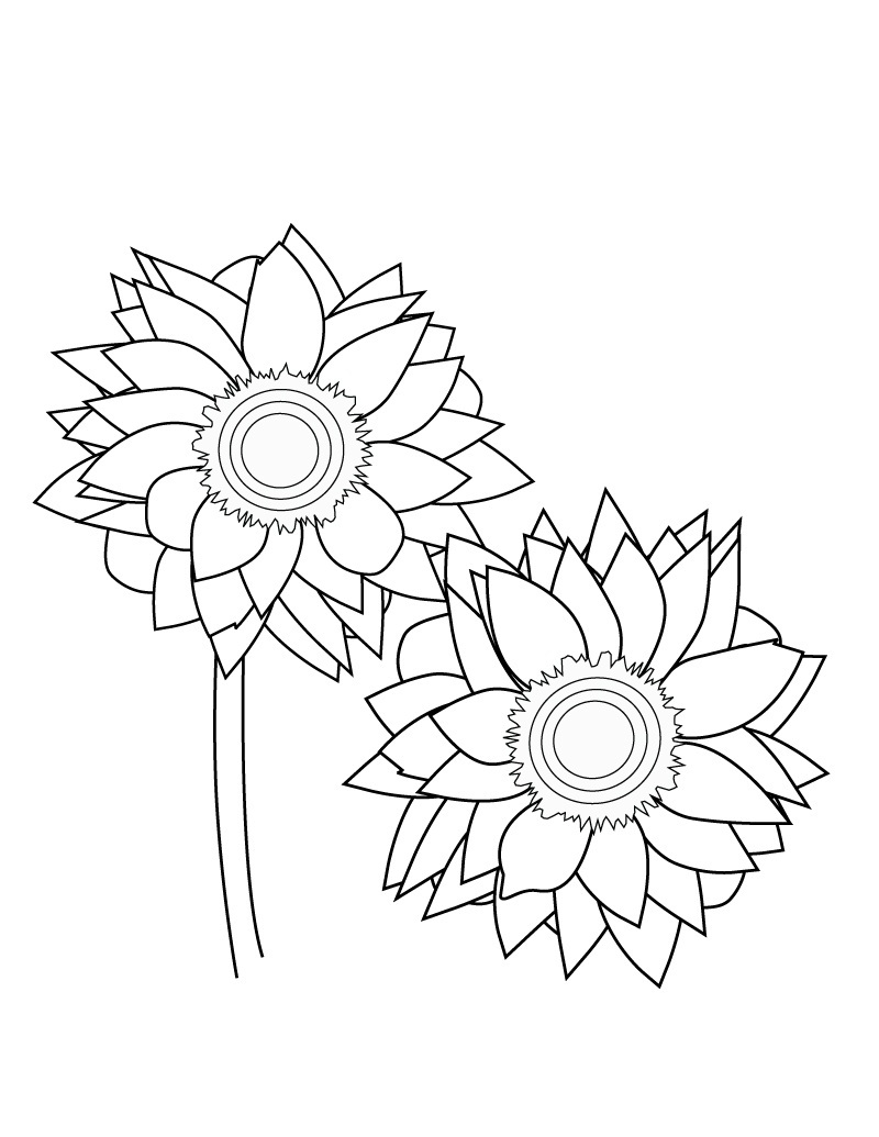 800x1035 Free Printable Sunflower Coloring Pages For Kids